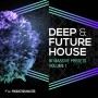 deephouse-future-house-sample-pack-vol-1b